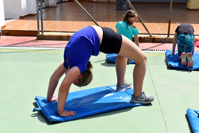 Omvendt undervisning i gym!